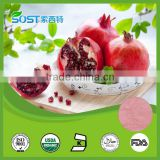 hot sale product pomegranate instant powder drink fruit flavoured