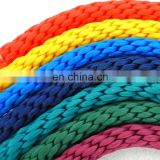 Polyester or Nylon climbing rope