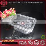 Transparent Vented APET Material Plastic Fruit container with Lid DY-H2000A