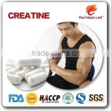 For Muscle Growth Wholesale Creatine Monohydrate Powder Capsules
