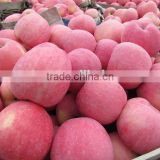 Royal Fresh Red Fuji Apple From Shanxi