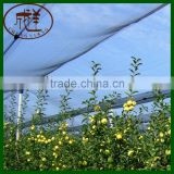 HDPE 80gsm virgin material hail protection anti hail netting