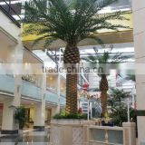Top fake fiber glass palm tree indoor and outdoor decoration artificial outdoor palm trees