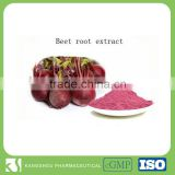 Organic beet sugar beet root powder