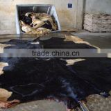 Cow Hides/Dry Salted Cattle Hides/Dry Salted Cow Hides/Wet Salted Cattle Hides/Donkey Hides