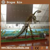 2016 simulation dinosaur skeleton replica for museum