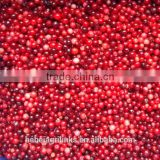 frozen style Chinese fresh lingonberry