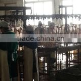 farm machine equipment/slaughter conveying line/Segmentation Conveying Line|Chicken Slaughtering Line/Machine