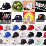 flex fit hip hop cap and hat fashion custom blank flat custom 5 panel sports cap