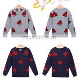 2015 New autumn children's clothing factory direct wholesale of baby boy sweater designs