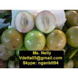 Vietnamese star apple