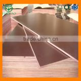 Hot Selling different types of phenolic plywood with lowest phenolic film faced plywood price
