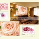 Red Rose wallpaper murals for background