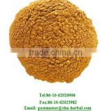 Factory supply Guarana Extract powder/Guarana Seed Extract powder/guarana extract 60%