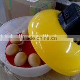 Automatic top selling incubator/Small size chicken egg incubator wholesale HJ-M8