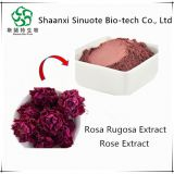Organic Natural Rose Petal Extract Powder for Beauty Skin