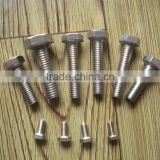 304 ss dental implants screw and extruder screw barrel