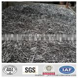 electro galvanized common wire nail/common iron wire nails/bright common nails factory