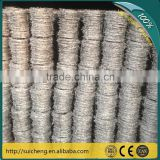 Guangzhou Barbed Iron Wire/Barbed Wire Nails/Barbed Wire 500m (Factory)