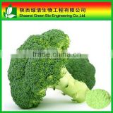 High Quality Sulforaphane(Broccoli seed extract) Antioxidant