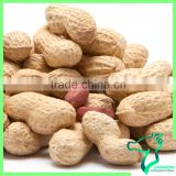 Bulk Peanut In Shell Chinese Origin Peanut