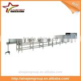 Inverse PET Bottle Conveyor System With Sterilizing Chain