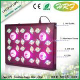 COB led grow light from Herifi High power full spectrum led grow light 600w best for indoor garden growing high quality grow lamps