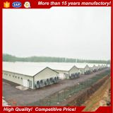 Low cost steel frame prefabricated steel structure building poultry farm shed