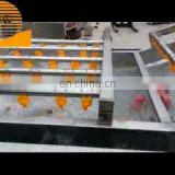 High pressure water jet fruit and vegetable brush cleaner washer Vegetable washing line equipment