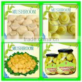 400G canned champignon mushroom whole and pieces and stems for sale