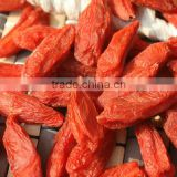 wolfberry fruit, lycium fruit, goji berries,big size