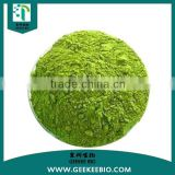Natural Bulk Organic Moringa Leaf Extract Powder / Moringa leaf powder