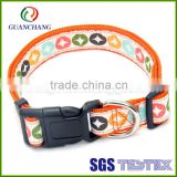 Color change bamboo nylon dog collar and leash
