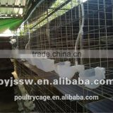 Industrial Galvanized Pigeon Breeding Cage With Automatic Water System