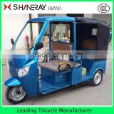 Shineray 1000W 3 Wheels Electric Car