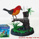 Battery Operated bird toy PAF886B
