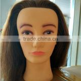 100% human hair wholesale mannequin head afro training mannequin head                                                                         Quality Choice