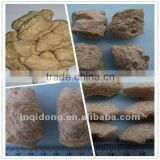 soya beans nuggets protein food process machine