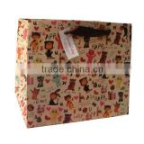 Beautiful Paper Bag for shopping,gift, garment