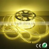 CE&RoHS best price 5050 flexible waterproof led strip mr light led torch