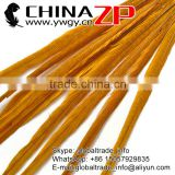 Leading Supplier ZPDECOR Factory Exporting Bulk Sale Bleached Dyed Gold Ringneck Pheasant Tail Feathers for Parties Decorations