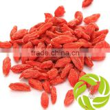 Super china natural herb medicines dried fruit tea gouqizi relieve cough dried wolfberry medlar goji berry herbal tea