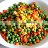 Fresh IQF mixed canned vegetable green peas carrot sweet corn potato frozen vegetable