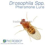 Drosophila spp. Attractant, Plant/Botanical Attractant for Fruit Fly Species