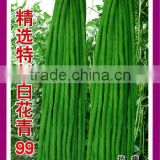 Selected Super Long Hybrid Green Chinese Long Bean Seeds Cowpea Seeds Long Asparagus Bean Seeds For Cultivation