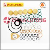 cummins 6bt 5.9 l engine rebuild kit 2 417 010 010  wholesale Overhaul Kit Ve Pump Fuel Injector Repair