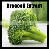 Freeze Dried Broccoli P.E Sulforaphane Powder