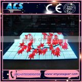 ACS LED Dance Floor, Portable LED Video Floor, LED Floor for Club