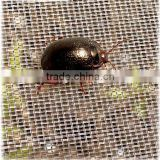 Anti insect net/Insect net/agricultural insect net