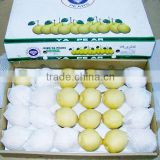 Korean Pear/Fresh fruit Pear/Chinese gong/kings crown/zhaoxian                                                                         Quality Choice